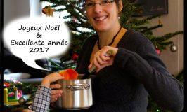 frohe-weihnachten-gutes-jahr-2017-wenndiekochtoepfereden