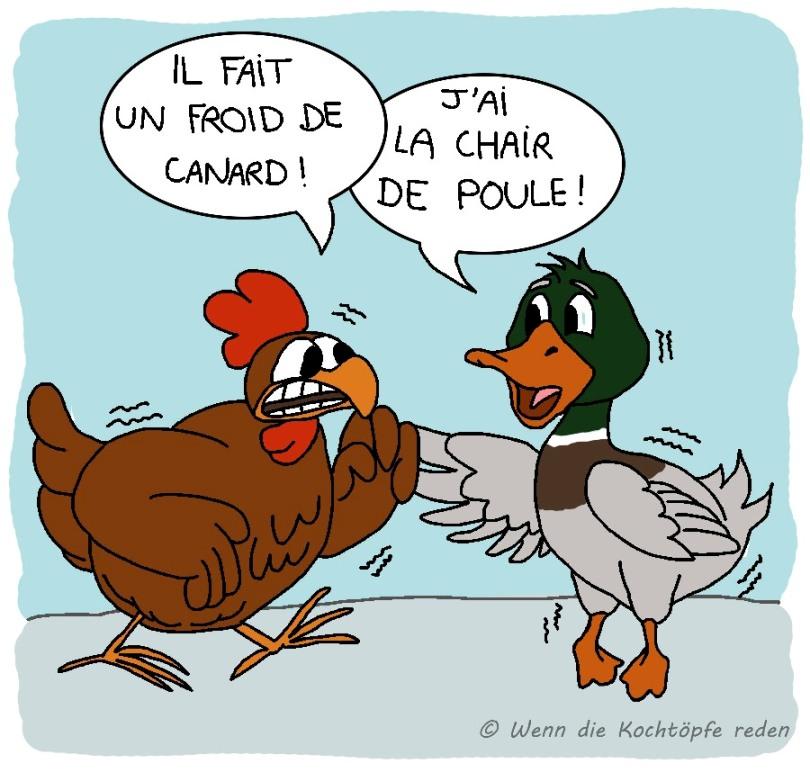 froid-canard-chair-poule-redewendungen-franzoesisch