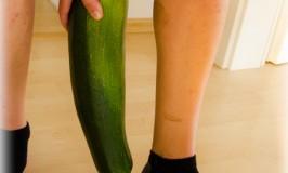 Reiche Zucchini-Ernte…